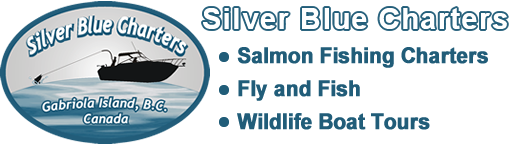 Silver Blue Charters